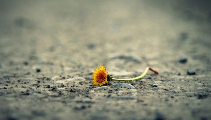 Jednom ćeš shvatiti da si ostala sama!