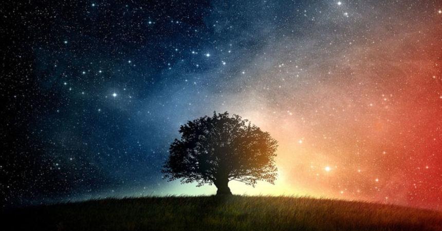 Zašto se u životu ponekad tako kasno sjetimo živjeti?
