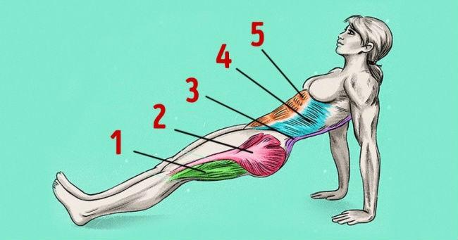 Samo jedna vježba za zategnuto tijelo i sagorijevanje masti