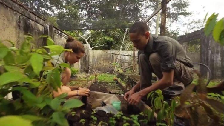Novi zakon na Filipinima: Učenici ne mogu da završe školu ako ne posade bar 10 stabala