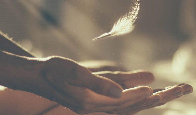 """""""SVAKO I SVE dolazi u naš život s razlogom.""""- Mudre lekcije za sklad, sreću i mir"""